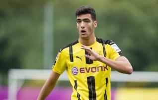 Newcastle hankis Dortmundist poolkaitsja <i>(uuendatud)</i>