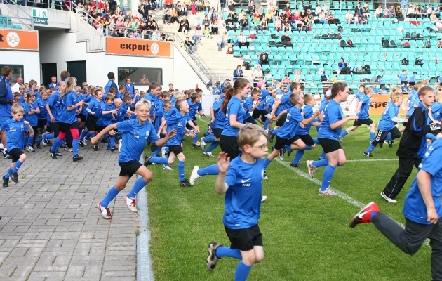 Eesti jalgpalli peamine mure, mida on võimalik lahendada poliitilisel tasandil, puudutab taristut. Foto: Hendrik Osula