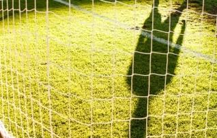 Agronoom Puusepp paljastab parima jalgpallimuru saladused